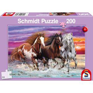 Wildes Pferde-Trio