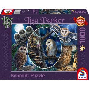 Lisa Parker: Geheimnisvolle Eulen