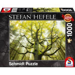 Stefan Hefele: Traumbaum
