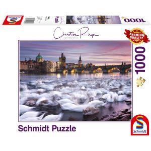 Christian Ringer - Prag - Schwäne